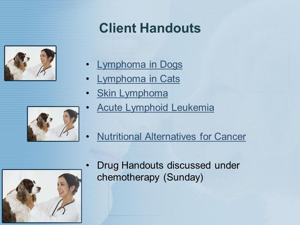 Client Handouts Lymphoma in Dogs Lymphoma in Cats Skin Lymphoma