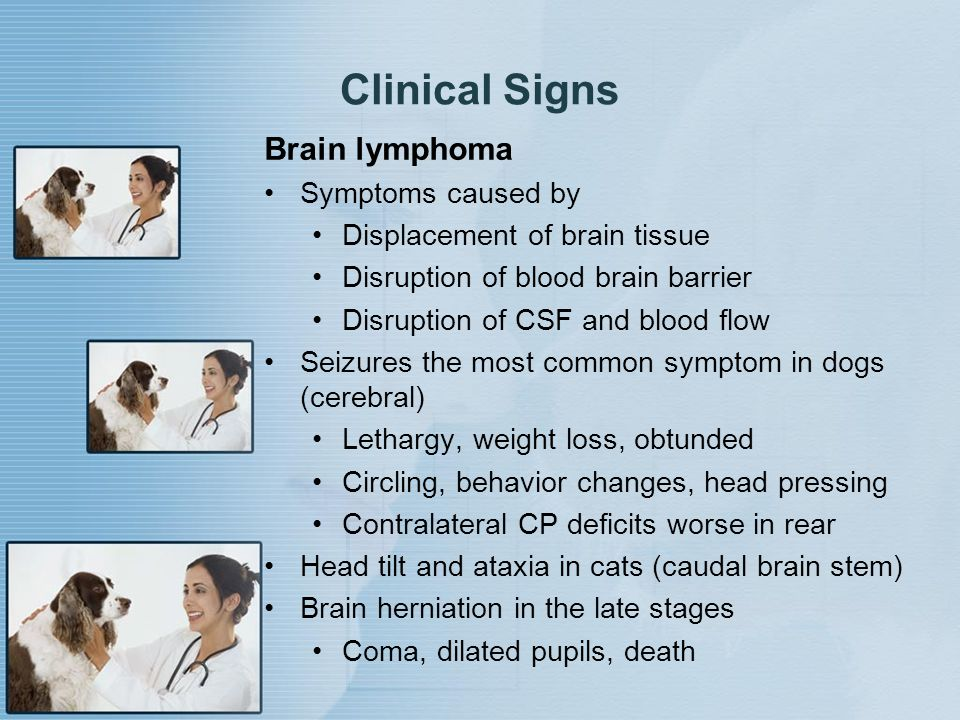 Clinical Signs Brain lymphoma Symptoms caused by