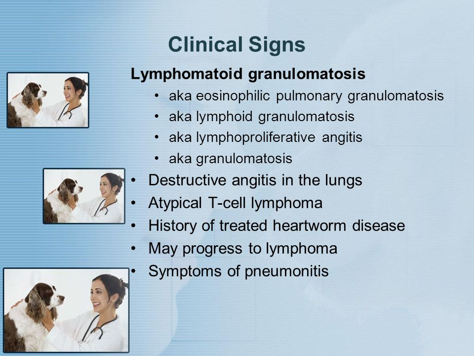 Clinical Signs Lymphomatoid granulomatosis