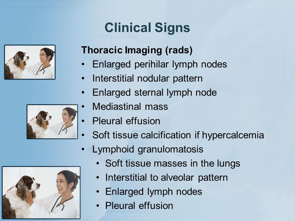 Clinical Signs Thoracic Imaging (rads) Enlarged perihilar lymph nodes