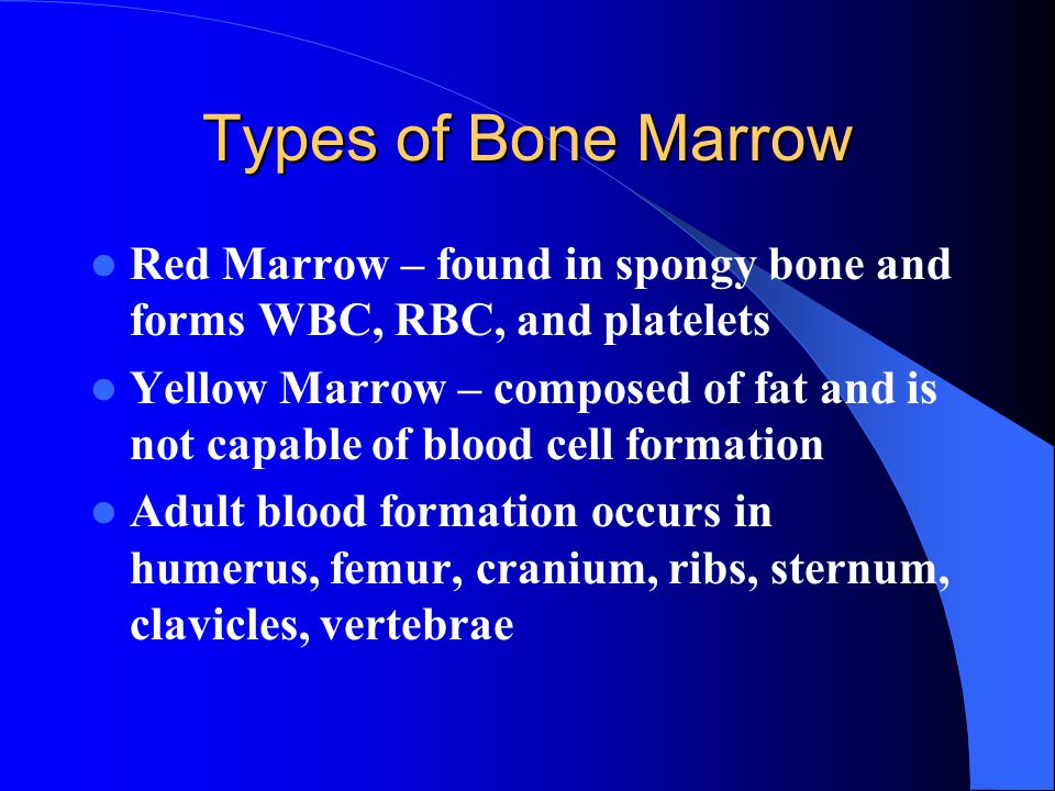 Types of Bone Marrow Red Marrow – found in spongy bone and forms WBC, RBC, and platelets.