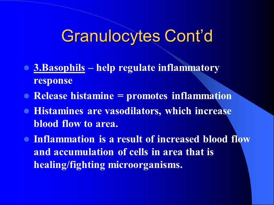 Granulocytes Cont'd 3.Basophils – help regulate inflammatory response