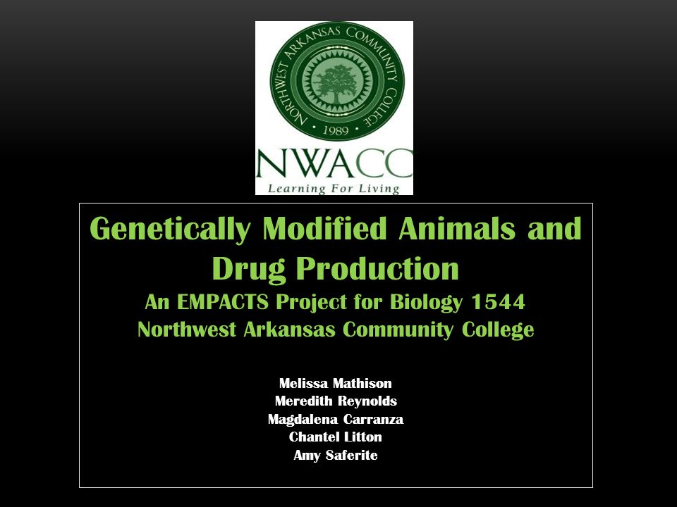 Genetically Modified Animals and Drug Production