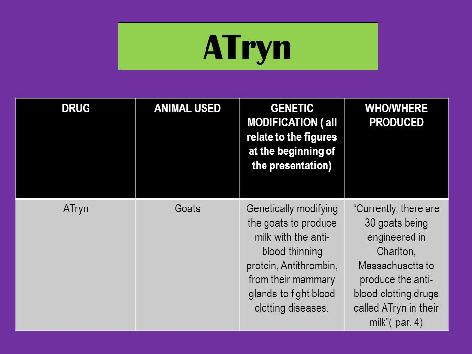 ATryn DRUG. ANIMAL USED. GENETIC MODIFICATION ( all relate to the figures at the beginning of the presentation)