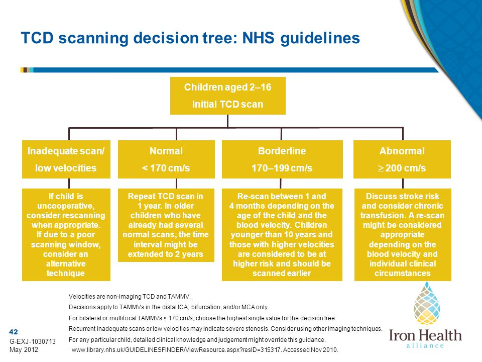 TCD scanning decision tree: NHS guidelines