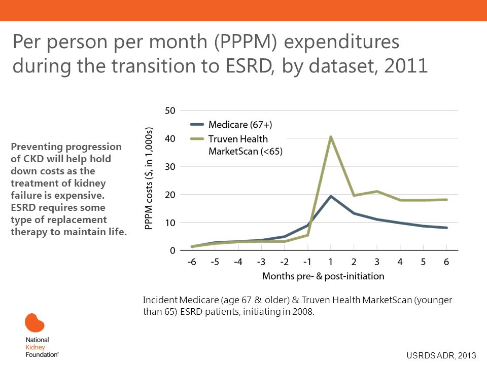 Per person per month (PPPM) expenditures during the transition to ESRD, by dataset, 2011