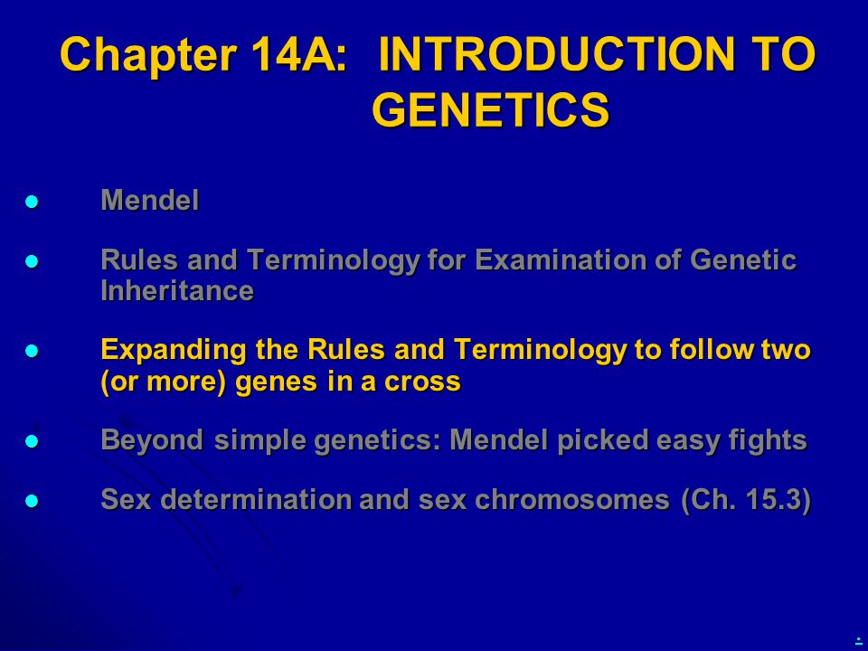 Chapter 14A: INTRODUCTION TO GENETICS
