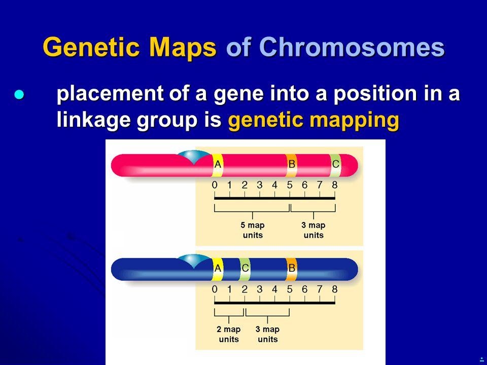 Genetic Maps of Chromosomes