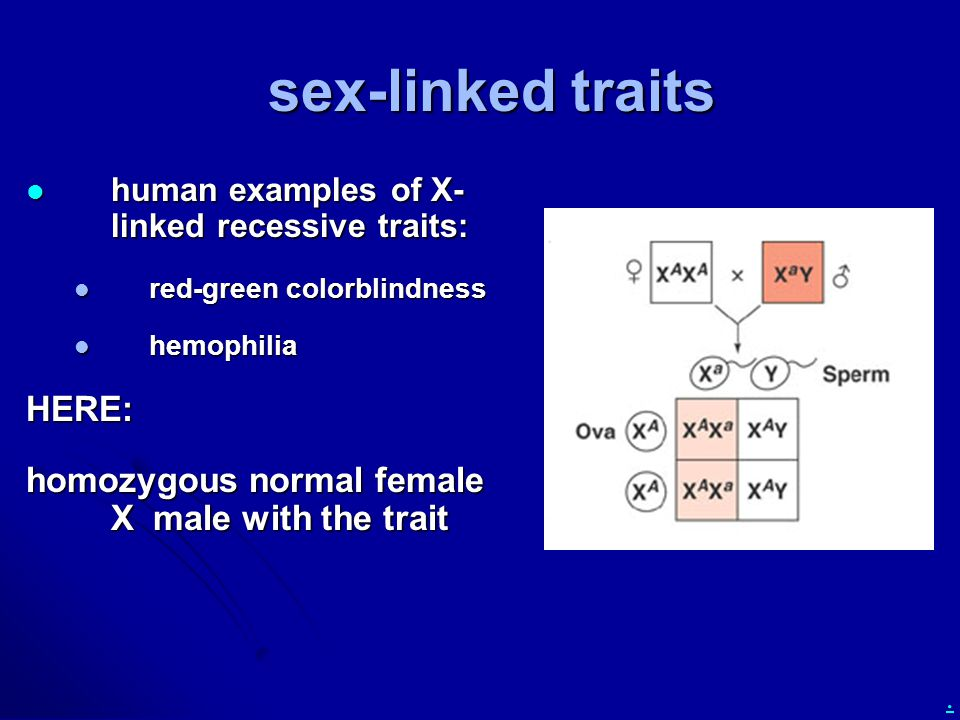 sex-linked traits HERE: homozygous normal female X male with the trait