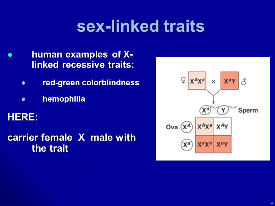 sex-linked traits HERE: carrier female X male with the trait