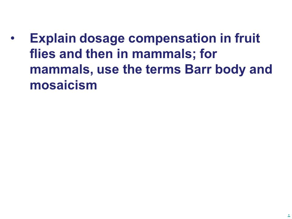 Explain dosage compensation in fruit flies and then in mammals; for mammals, use the terms Barr body and mosaicism