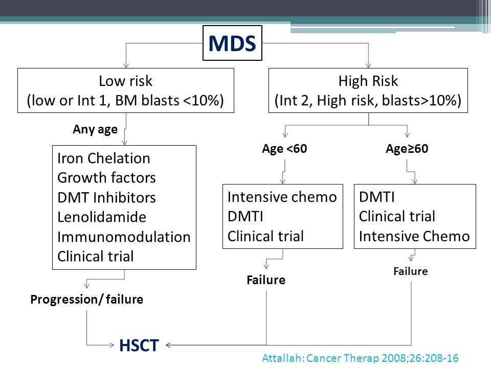 MDS HSCT Low risk (low or Int 1, BM blasts <10%) High Risk