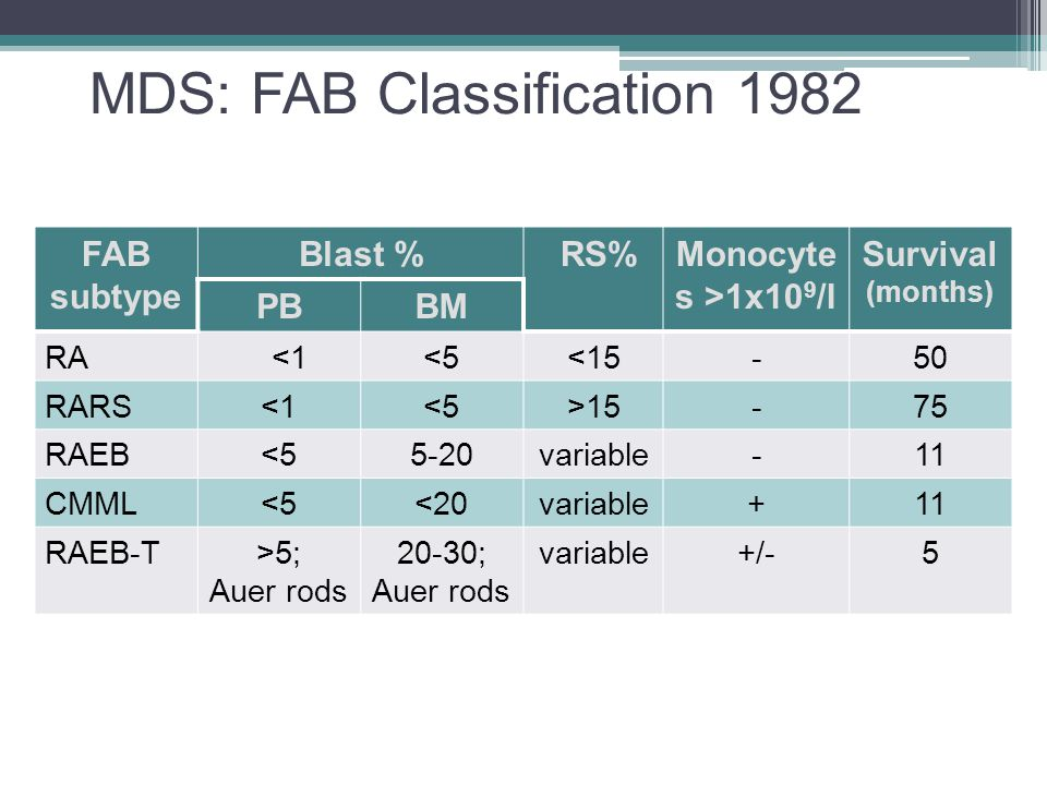 MDS: FAB Classification 1982