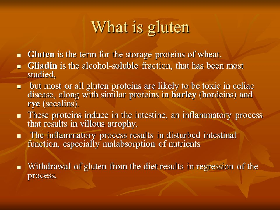 What is gluten Gluten is the term for the storage proteins of wheat.