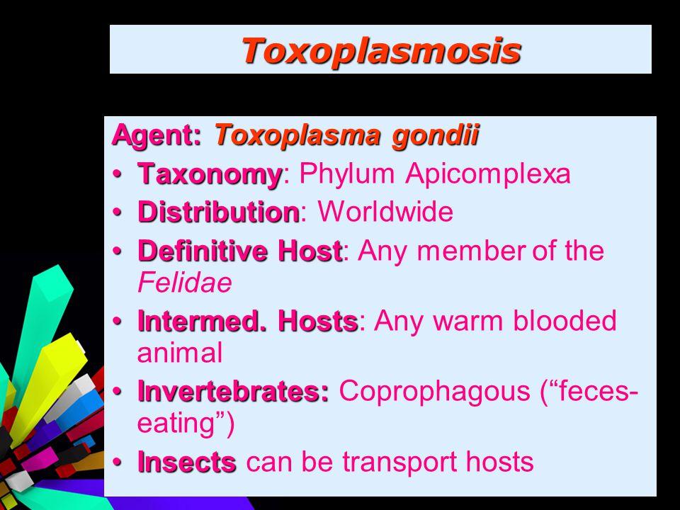Toxoplasmosis Agent: Toxoplasma gondii Taxonomy: Phylum Apicomplexa