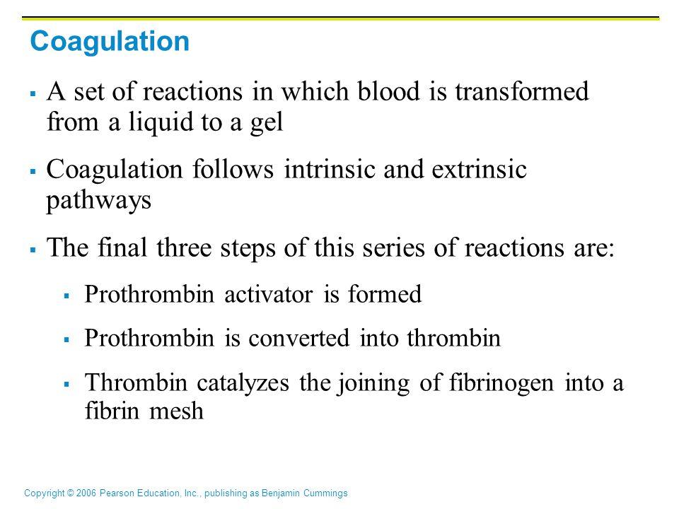 Coagulation follows intrinsic and extrinsic pathways