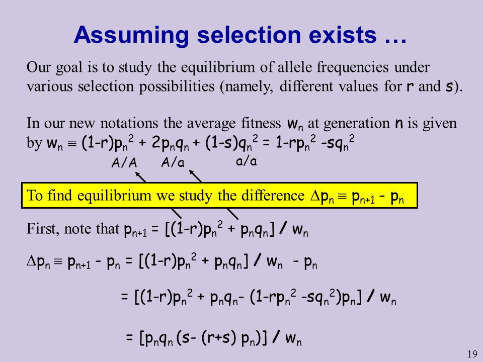 Assuming selection exists …