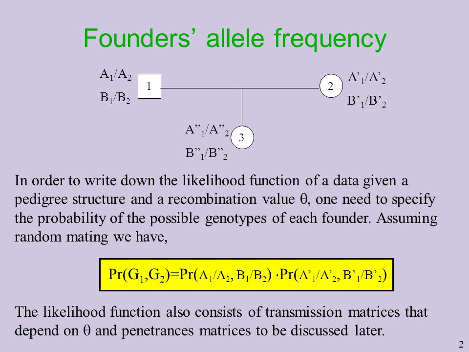 Founders' allele frequency