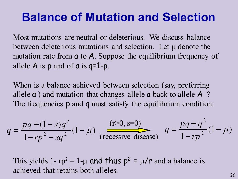 Balance of Mutation and Selection