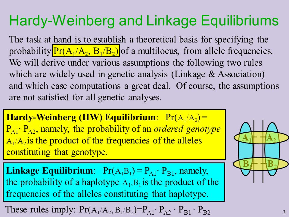 Hardy-Weinberg and Linkage Equilibriums