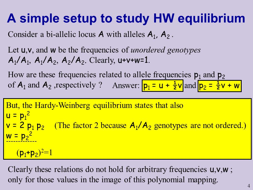 A simple setup to study HW equilibrium