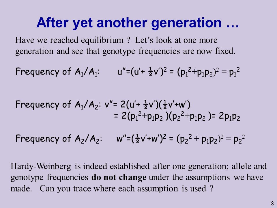 After yet another generation …