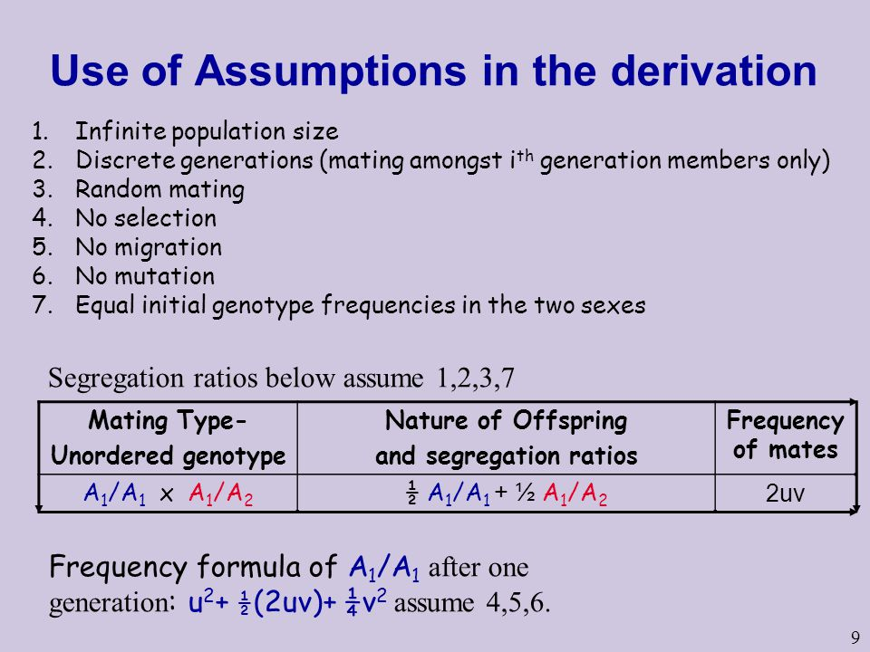 Use of Assumptions in the derivation