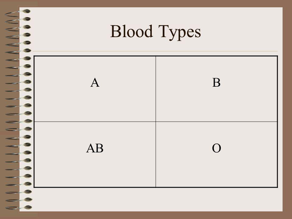 Blood Types A B AB O