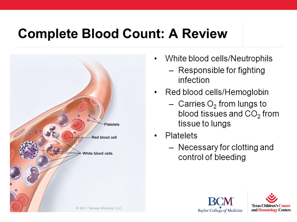 Complete Blood Count: A Review