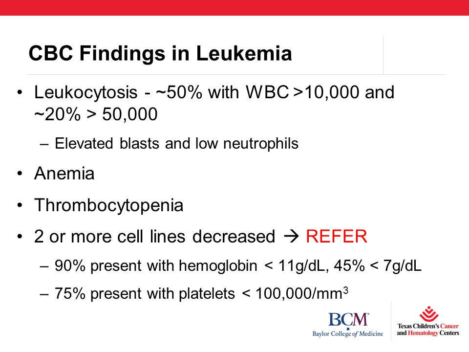 CBC Findings in Leukemia