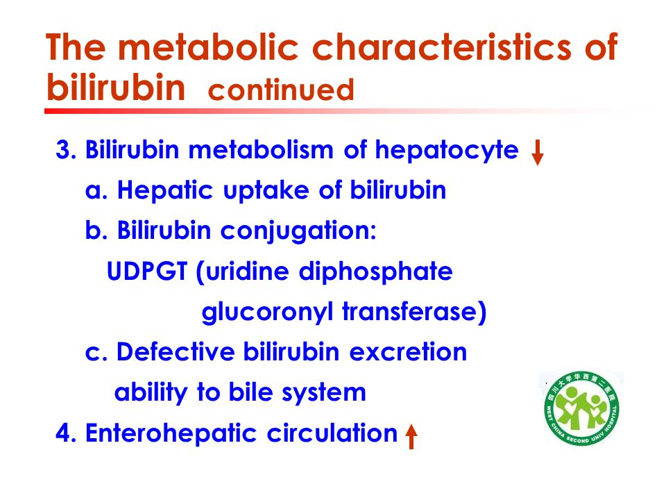The metabolic characteristics of bilirubin continued