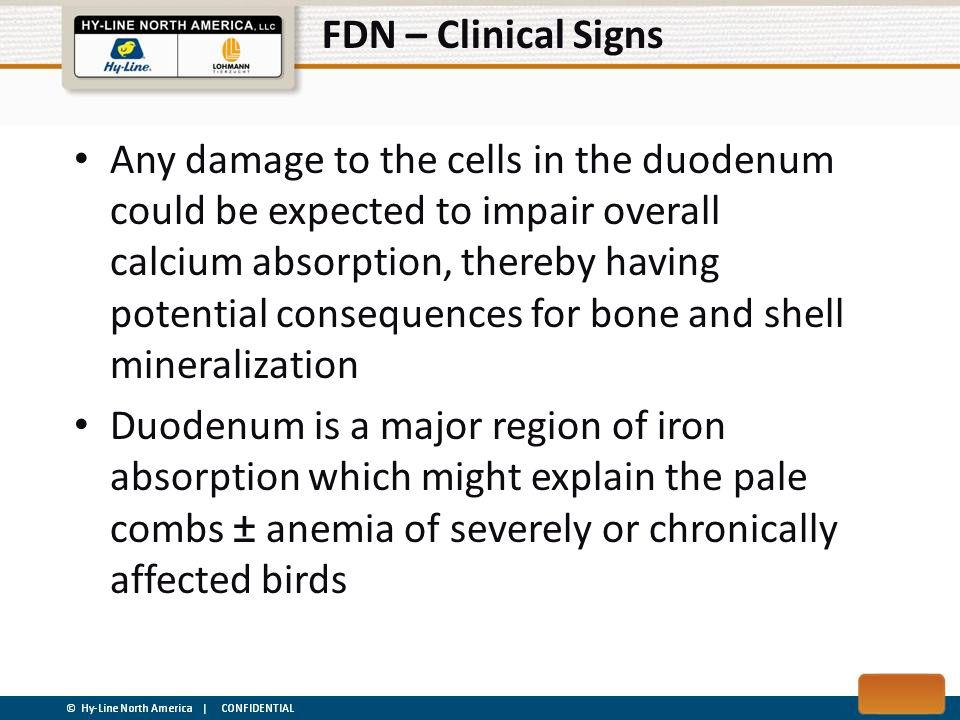 FDN – Clinical Signs