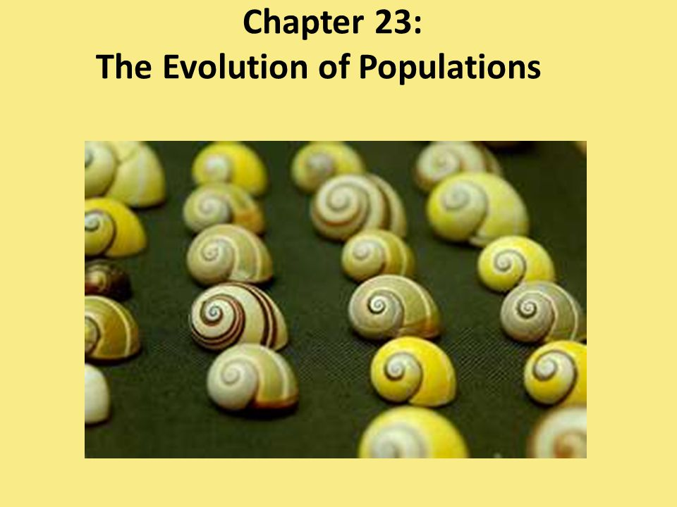 ap chapter 23 the evolution of populations answers