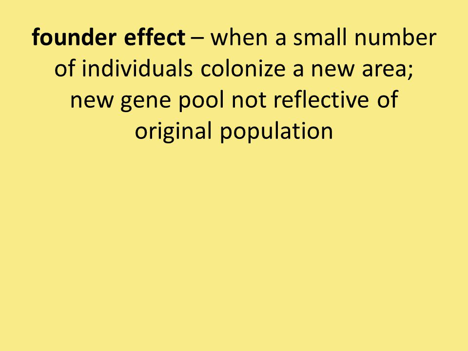 founder effect – when a small number of individuals colonize a new area; new gene pool not reflective of original population