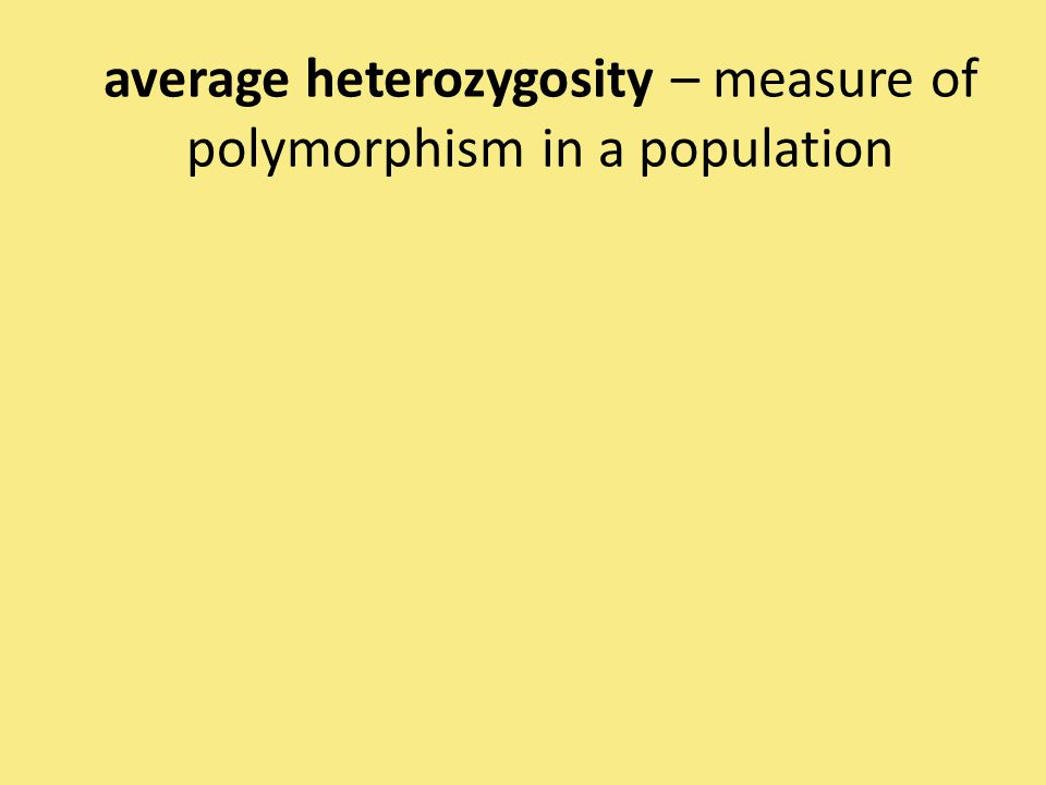 average heterozygosity – measure of polymorphism in a population