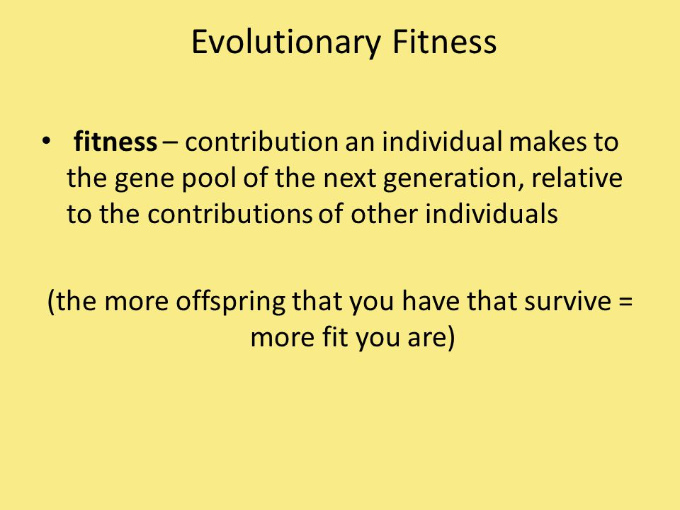 (the more offspring that you have that survive = more fit you are)