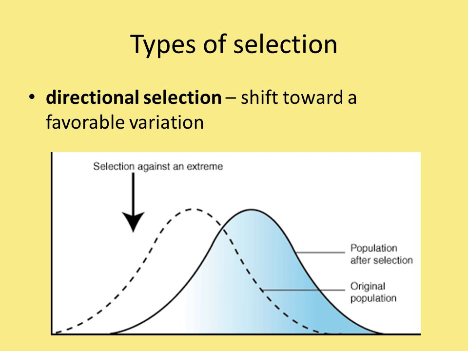 Types of selection directional selection – shift toward a favorable variation