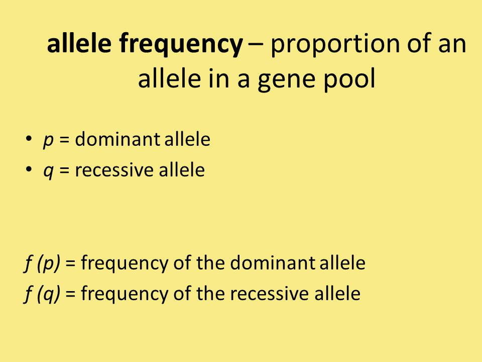 allele frequency – proportion of an allele in a gene pool