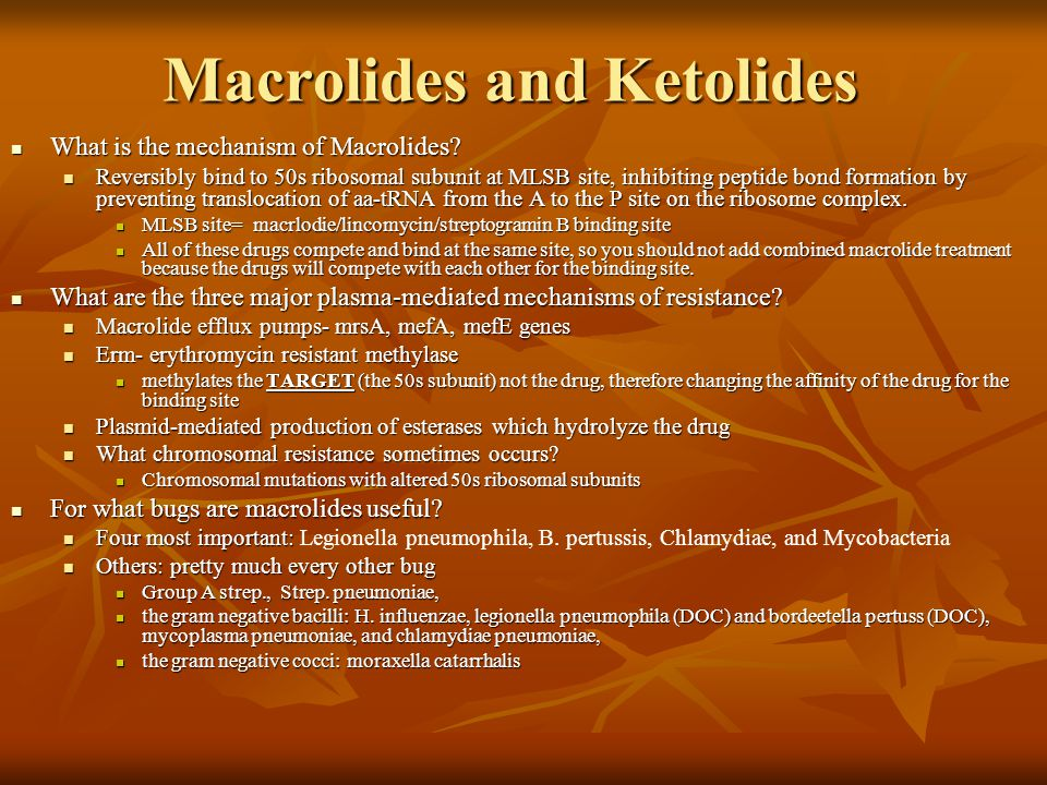 Macrolides and Ketolides