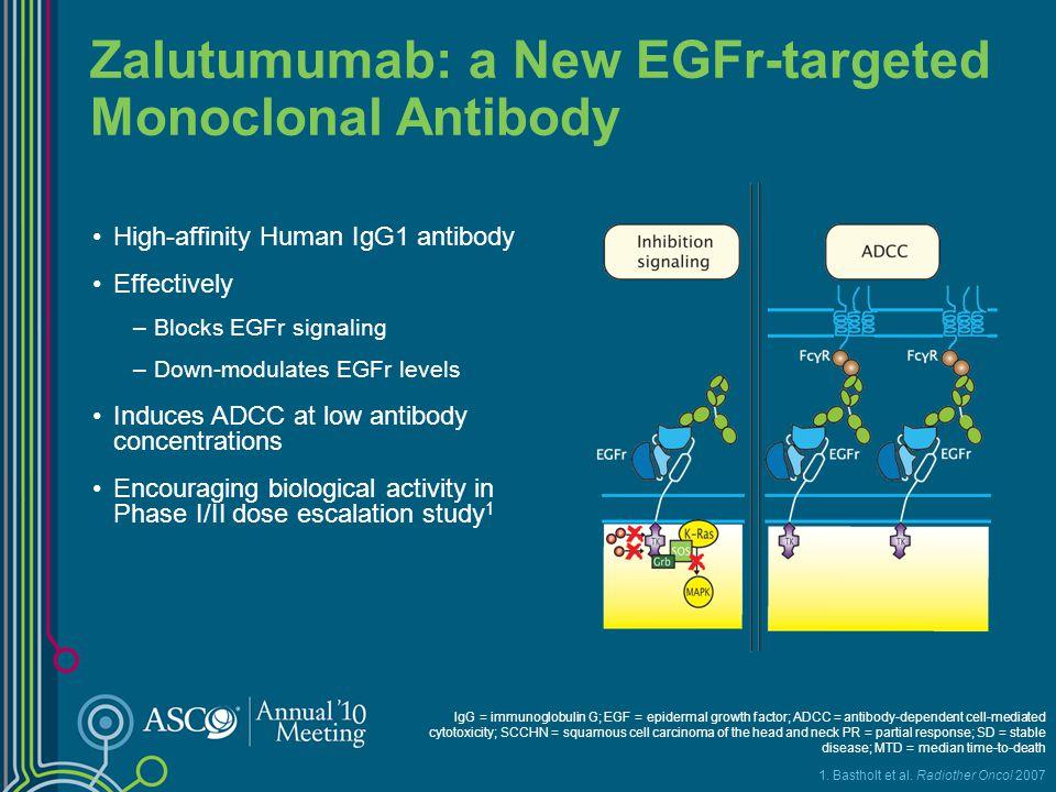 Zalutumumab: a New EGFr-targeted Monoclonal Antibody