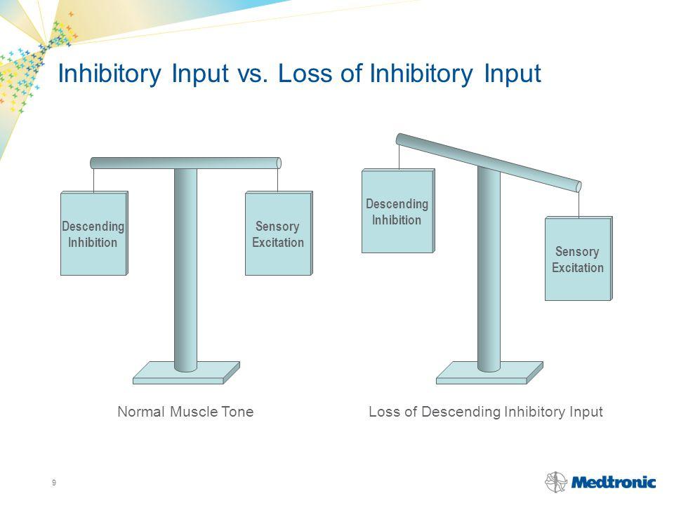 Inhibitory Input vs. Loss of Inhibitory Input