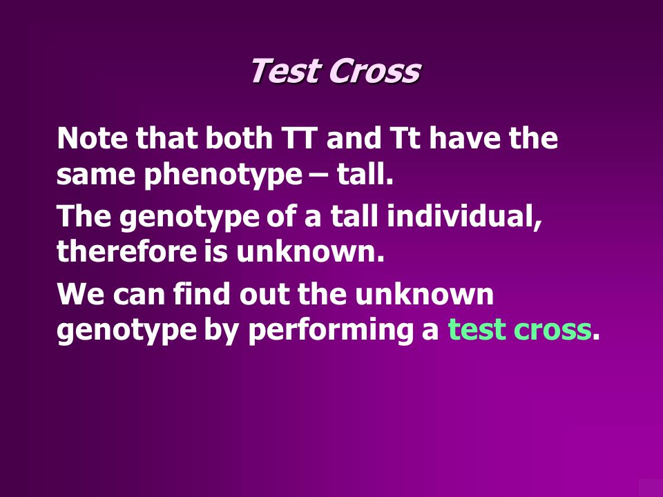 Test Cross Note that both TT and Tt have the same phenotype – tall.