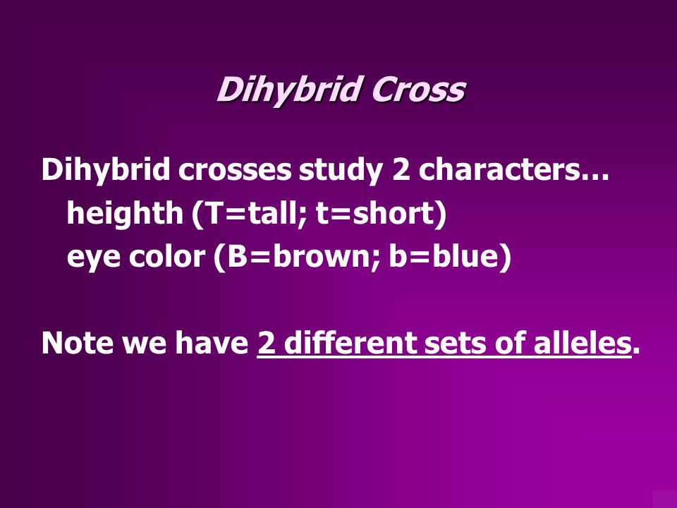 Dihybrid Cross Dihybrid crosses study 2 characters…