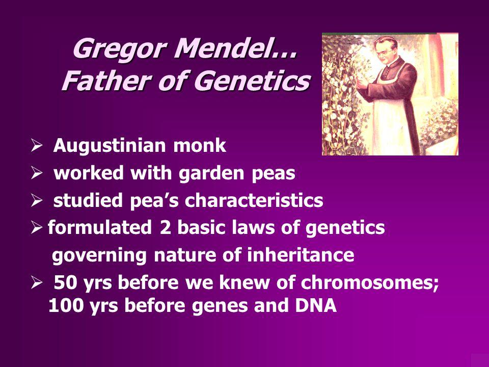 Gregor Mendel… Father of Genetics
