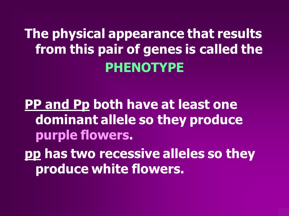 The physical appearance that results from this pair of genes is called the