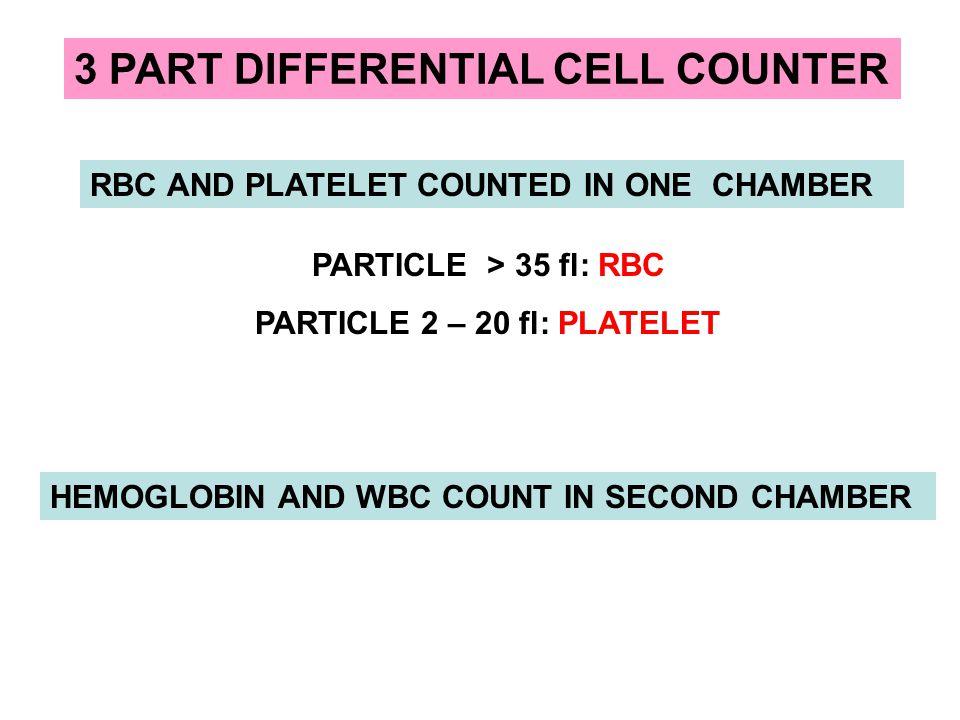 PARTICLE 2 – 20 fl: PLATELET