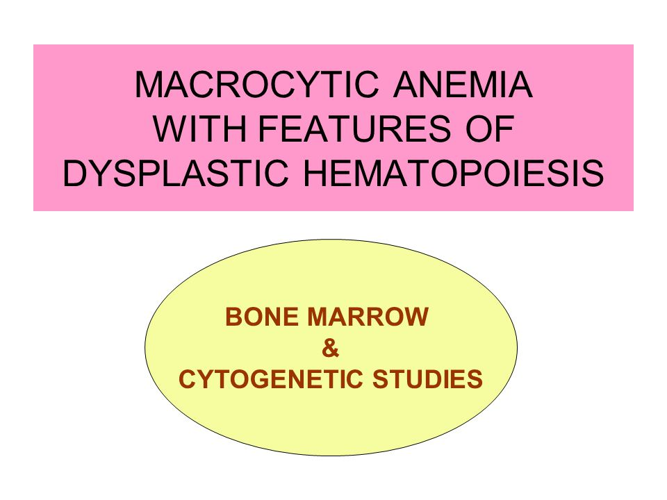 MACROCYTIC ANEMIA WITH FEATURES OF DYSPLASTIC HEMATOPOIESIS