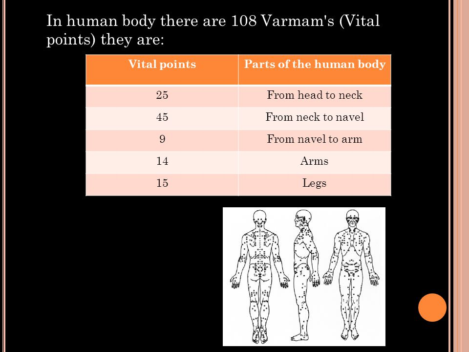 In human body there are 108 Varmam s (Vital points) they are: