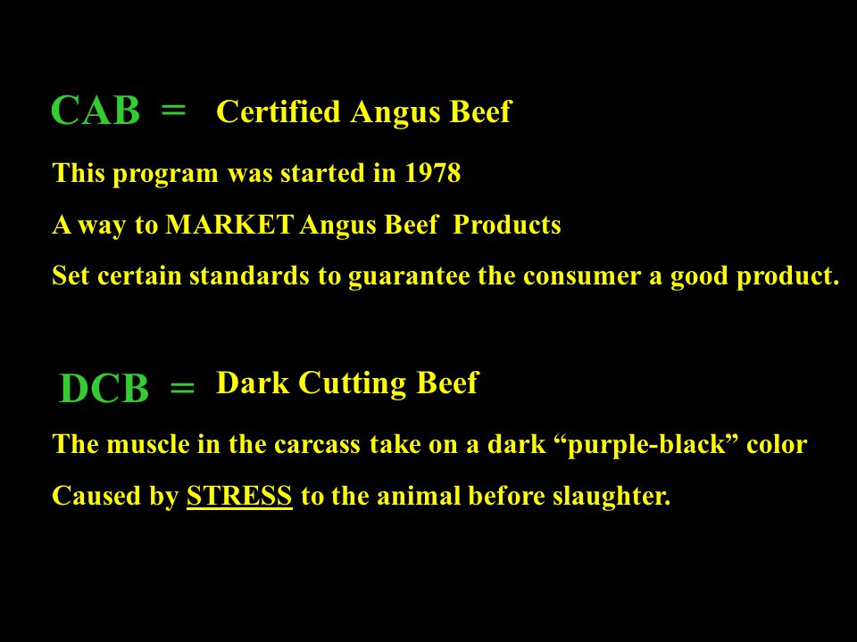 CAB = DCB = Certified Angus Beef Dark Cutting Beef