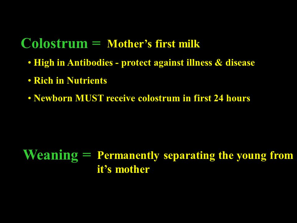 Colostrum = Weaning = Mother's first milk